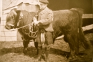 Poltalloch Herdsman 1909