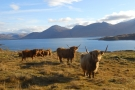Loch na Keal and Benmore.